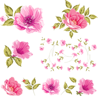Collection set of flower heads isolated on white background. Vector illustration.