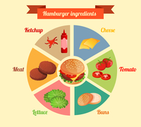 Hamburger ingredients meat cheese tomato lettuce bun cucumber pie chart infographic vector illustration