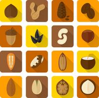 Nuts icons set with walnut hazelnut pistachio isolated vector illustration