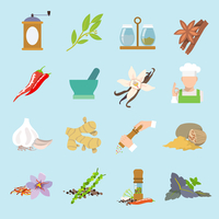 Herbs and spices flat icons set of ginger chili pepper garlic isolated vector illustration.