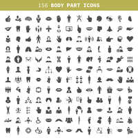 Collection of icons of a part of a body the person. A vector illustration