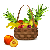 Natural organic tropical and garden fruits set in basket still life vector illustration