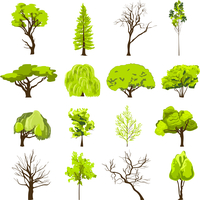 Decorative deciduous foliage and conifer forest park trees silhouette abstract design icons set sketch isolated vector illustrat