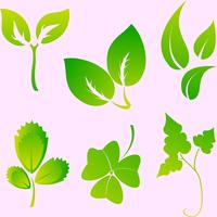 Vector illustration set of design leaves silhouettes 60016009599| 写真素材・ストックフォト・画像・イラスト素材|アマナイメージズ