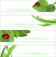Vector illustration of  Beautiful Spring Banners or Backgrounds with funny ladybugs and dragonflies