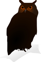 Vector image of owl