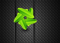 Leaves on carbon background