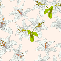 Seamless  background with flower lily. Could be used as seamless wallpaper, textile, wrapping paper or background 60016011109| 写真素材・ストックフォト・画像・イラスト素材|アマナイメージズ