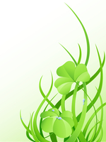 nature background with green grass and leaves of clover
