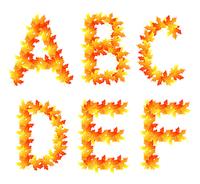 Alphabet made from autumn falling maple leaves 60016016029| 写真素材・ストックフォト・画像・イラスト素材|アマナイメージズ
