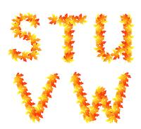 Alphabet made from autumn falling maple leaves 60016016032| 写真素材・ストックフォト・画像・イラスト素材|アマナイメージズ