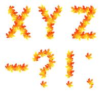 Alphabet made from autumn falling maple leaves 60016016033| 写真素材・ストックフォト・画像・イラスト素材|アマナイメージズ