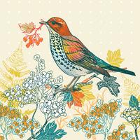 vector illustration of a forest bird and autumn plants 60016017502| 写真素材・ストックフォト・画像・イラスト素材|アマナイメージズ