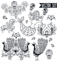 vector set of hand drawn vintage emblems