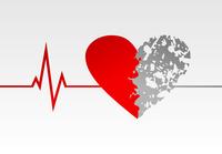 Heart life. The cardiogramme of a rhythm of heart. A vector illustration