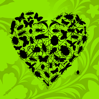 Heart of insects. Heart from insects on a green background. A vector illustration