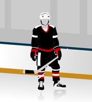 hockey player. The hockey form on a skating rink. A vector illustration