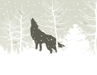 The wolf howls in winter wood. A vector illustration