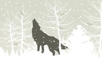 The wolf howls in winter wood. A vector illustration 60016024554| 写真素材・ストックフォト・画像・イラスト素材|アマナイメージズ
