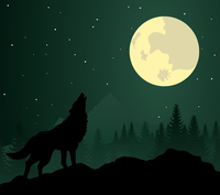 wolf2. Wild animal with burning eyes in night darkness. Vector illustration