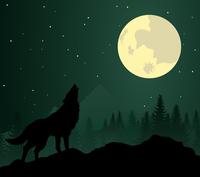wolf2. Wild animal with burning eyes in night darkness. Vector illustration 60016024556| 写真素材・ストックフォト・画像・イラスト素材|アマナイメージズ