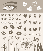 Body part. Collection of parts of a body. A vector illustration
