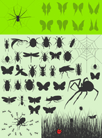 Collection of insects2. The big collection of insects. A vector illustration