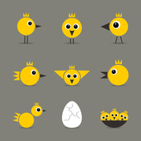 Set of yellow baby birds of hens of birds 60016026005| 写真素材・ストックフォト・画像・イラスト素材|アマナイメージズ