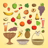 Set of juicy fresh fruits, orange, grape, apple, strawberry, cherry and others vector illustration