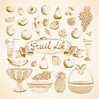 Sketches of juicy fresh fruits orange, grape, apple, strawberry, cherry and others vector illustration