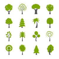 Collection of natural green trees icons set pine fir oak and other trees isolated vector illustration 60016027752| 写真素材・ストックフォト・画像・イラスト素材|アマナイメージズ