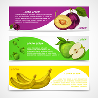 Mixed natural organic sweet fruits banners collection of apple plum and banana for cafe dessert menu design template vector illu