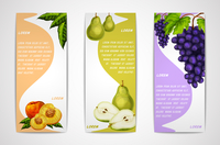 Mixed natural organic sweet fruits vertical banners collection of pear peach and grapes for cafe dessert menu design template ve