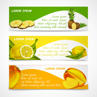 Natural organic tropical fruits banners set of cut and whole pineapple lemon mango design template vector illustration