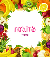 Natural exotic fruits collection frame with apple plum lemon peach kiwi vector illustration
