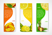 Natural organic tropical fruits vertical banners set of mango lemon pineapple design template vector illustration