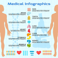 Flat medical infographics with human body silhouette and organs icons vector illustration