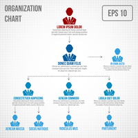 Organizational chart infographic business hierarchy boss to employee structure vector illustration