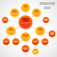 Organizational chart infographic business bubbles circle work process vector illustration