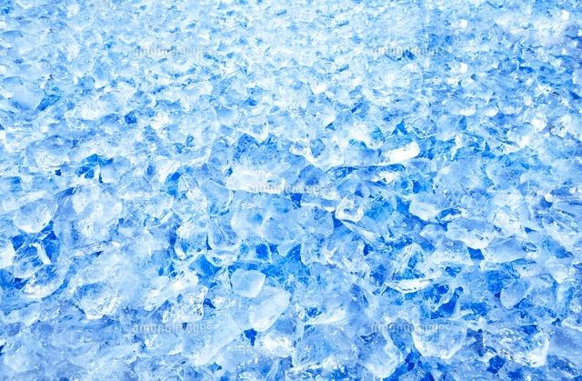 敷き詰めた氷