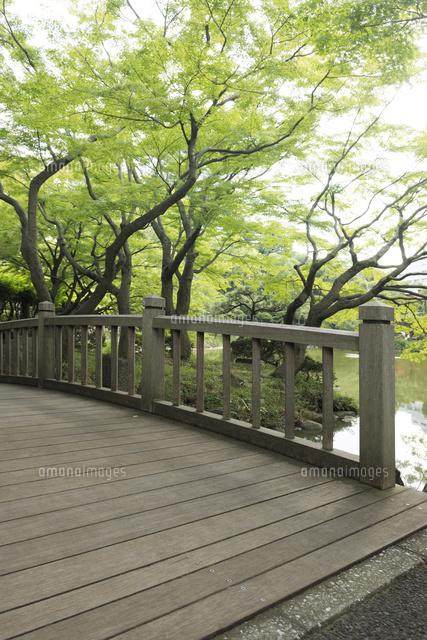 日比谷公園の木製の橋