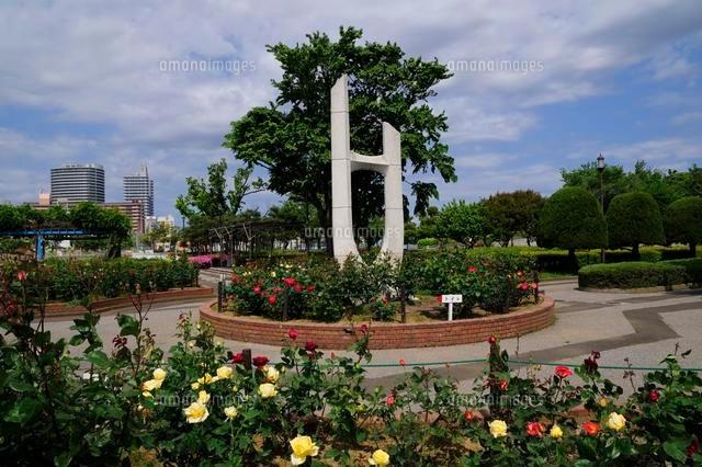 バラ咲く荒川自然公園[102520091...
