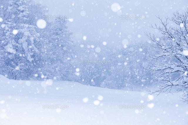 雪降る里山[10257002103]| 写真...