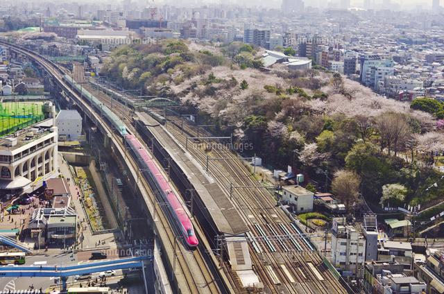 東京から秋田までの運賃・料金・割引 のぞみ新幹 …