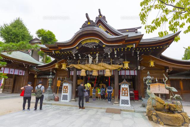 櫛田神社本殿[10487002343]| 写...