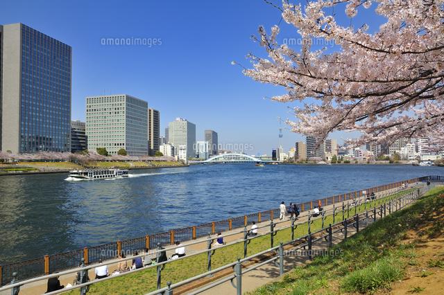 石川島公園と水上バス[105480051...