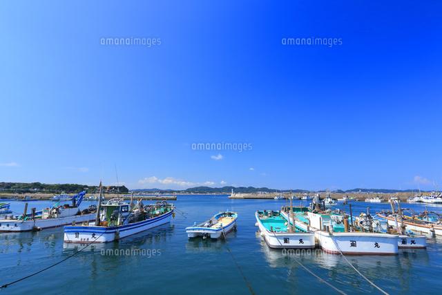 神奈川県 金田漁港[10669003786]...