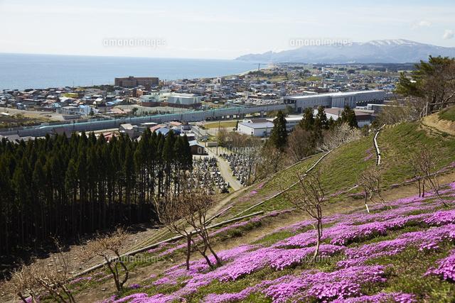 薬師山から見る新幹線[107240056...