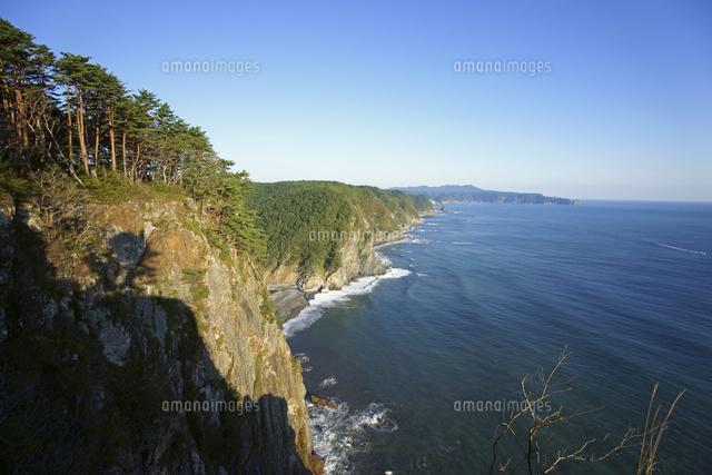 鵜ノ巣断崖[10867000002]| 写真...