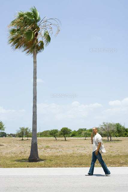 Man walking by palm tree,using cell phone,mid-distance